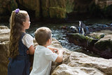 Little siblings looking at penguins