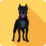 dog Cane Corso icon flat design