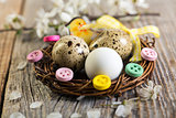 Easter nest with quail eggs.
