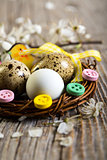 Colorful Easter nest with quail eggs closeup.
