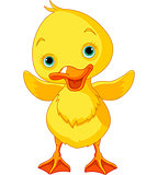 Happy Duckling