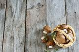 Mushrooms in basket background