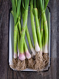 rustic tray of leeks