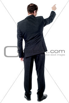 Back view of pointing businessman