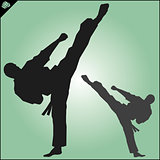 Karate. Taekwon-do. Kung-fu. High kick. MARTIAL ARTS.