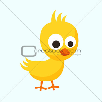 Small Chick