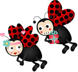 Cute ladybirds in love