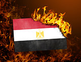 Flag burning - Egypt