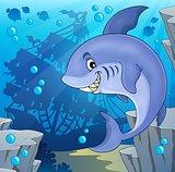 Image with shark theme 4