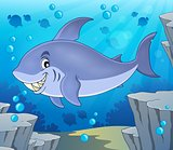 Image with shark theme 6