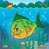Piranha fish underwater theme 1