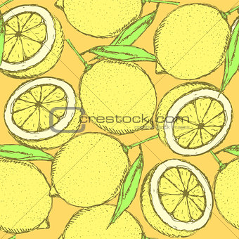Sketch juicy lemon in vintage style