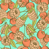 Sketch raspberry and cherry in vintage style