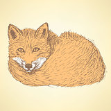 Sketch cute fox in vintage style