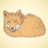 Sketch cute fox in vintage style