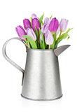 Purple tulip bouquet in watering can