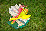 Garden tools over green grass field