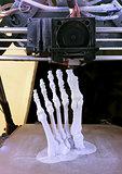 Foot Bones Printing