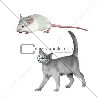 Cute white mouse, gray kitten walks, British cat