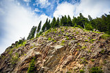 Mountain cliff abyss with green piens on top