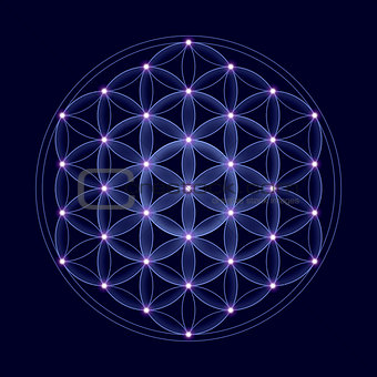 Cosmic Flower of Life With Stars