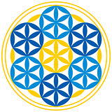 Flower of Life With Spheres