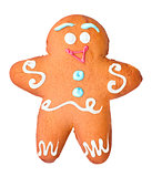 Gingerbread in the form of man, isolated