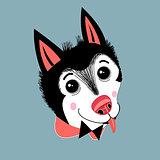 portrait of a puppy huskies