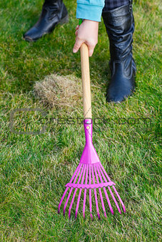 Cleaning green lawn by rake