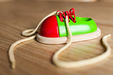 Ornamental wooden shoe toy