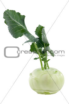 Kohlrabi including clipping path
