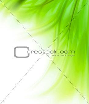 Green grass border background