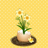 Easter Illustration Yellow Daffodil Flower on Polka Dot