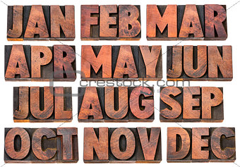 calendar concept - months in wood type