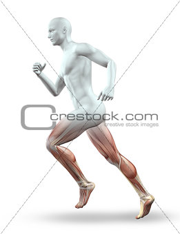 3D male figure running with skeleton