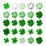 Saint Patrick's shamrock