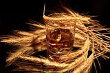 Whisky And Wheat On Dark