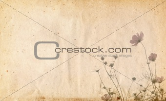 old and worn paper flower background frame