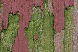 Detail of an old wooden fence