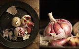 Compilation of images of Fresh raw garlic in moody natural light