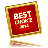 Vector best choice