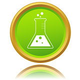 Laboratory flask icon