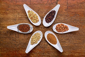 six  healthy, gluten free grains