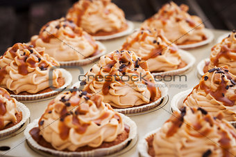 Caramel cupcakes on a baking tray
