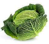 Savoy Cabbage On White