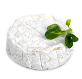 Camembert Cheese Isolated