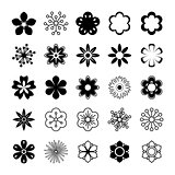 Vector Flower Set