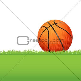 Basketball Sitting on Green Grass Illustration