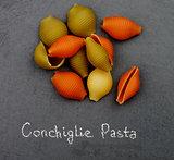 Conchiglie Tricolore Pasta
