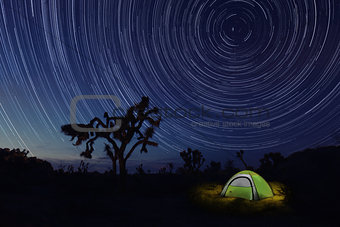 Camping at Night in Joshua Tree Park